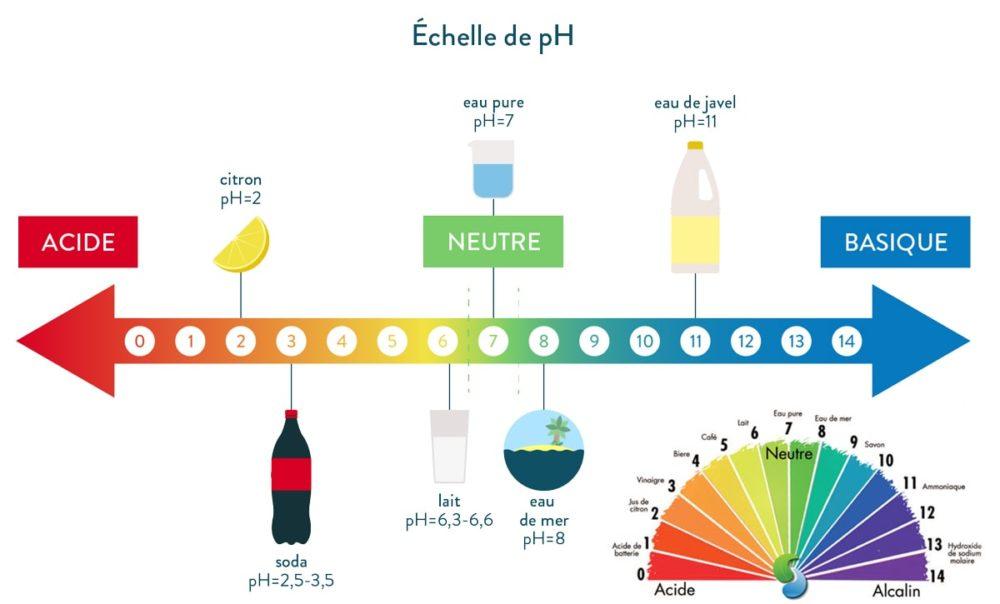 échelle de niveau de pH